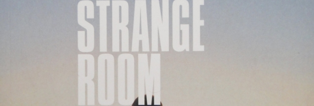 In A Strange Room by Damon Galgut - Copy